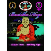 BIG BUDDHA SEEDS - BUDDHA HAZE - 10 Feminised